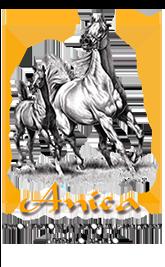 Anica Horse